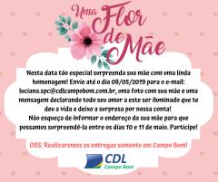 UMA FLOR DE MÃE!